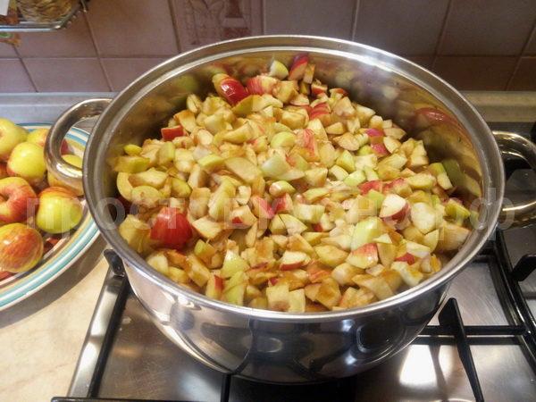 Почистили, порезали все яблоки. Сложили в кастрюлю и добавили воду. Ставим на огонь и доводим до кипения на медленном огне.